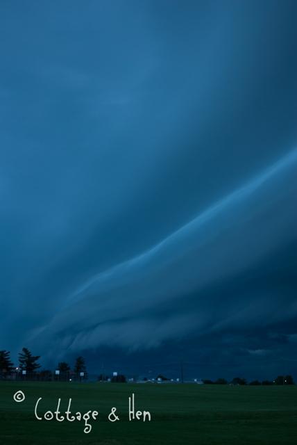 maystorm01