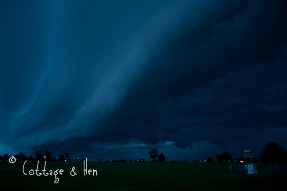 maystorm03