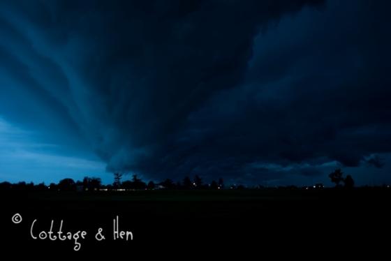 maystorm06